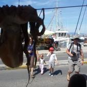 nasz pierwszy port - Aigina na wyspie Aigina
