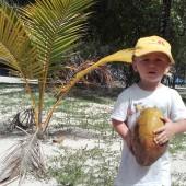 ..lub zbieranie wolno leżących sobie kokosów...