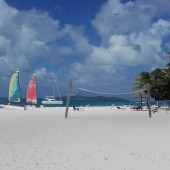 ...Palm Island..