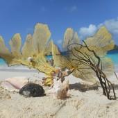 Kolejny przystanek - to White Island, państwo Grenada..