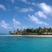 ...dalej Palm Island