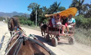 ..byliśmy bryczkami na wycieczce po okolicach Trynidadu