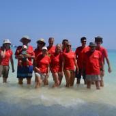 oto nasza ekipa od lewej: Małgosia, Jurek, Ania, Asia, Gosia, Piotr, Ania, Andrzej, Agata, Michał, Julek, Tomek