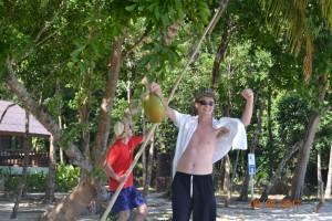 ...np. zrywanie lub zbieranie kokosów...